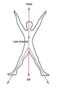 The Tail and the Core Line